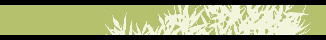 Green Bar for WordPress